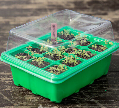 Seed Trays Plant Germination Kit Starting Durable Plastic Nursery Pots Gardening