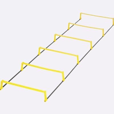 New SKLZ Elevation Ladder from The WOD Life