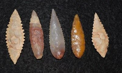 5 nice ovate Sahara Neolithic points/tools, color and/or serrations