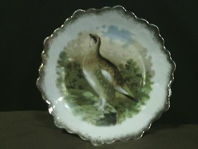 Antique Z.S.& Co.Bavaria Punch Scalloped Hand Painted Quail Plate,Germany