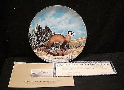 The Black Footed Ferret Collector Plate 1990 The Endangered Species W.S. George