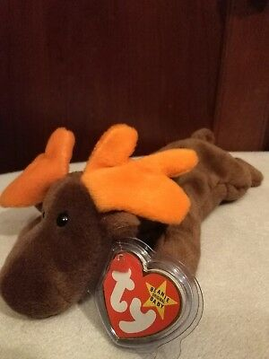 "ty Beanie Babies ""Chocolate"" NWT PVC(50% to charity)"