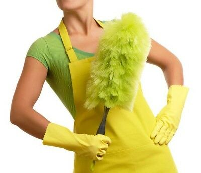 Established House Cleaning Service