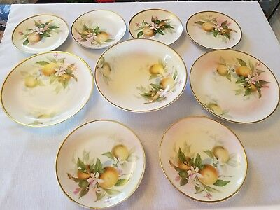 Vintage Hutschenreuther Selb Bavaria Hand Painted Signed Bowl and 8 plates.