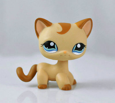 CAT SHORT HAIR Littlest Pet Animal child girl boy figure loose cute LPS830