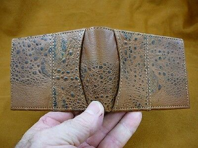(EL1000-61-3) Genuine Cane Toad brown hide leather bifold wallet Bufo Marinus