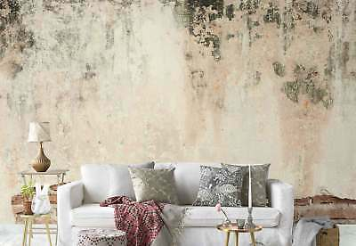 Old brick wall Grunge Concrete Photo Wallpaper Wall Mural (FW-1163)