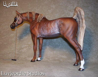Peter Stone Repaint CM Sorrel Rabicano Arabian Mare with Resin Head