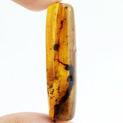 9.94 ct Natural Burmite Amber Cabochon Inclusion 100 Million Years Old* / S8385