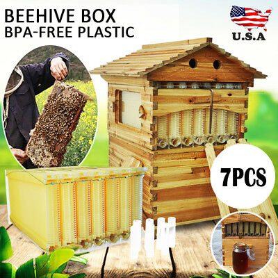 Cedarwood Beekeeping Super Brood Box + 7X Beehive Free Hive Flow Honey Frames