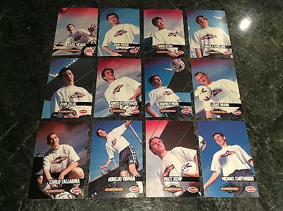 Adelaide City Force Football Club 1999/2000 Soccer Club Issued Cards