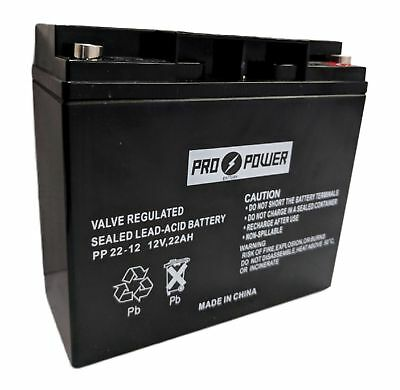 Pro Power 12v 22ah T1 for DR Field and Brush Mower