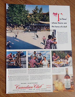 1953 Canadian Club Whiskey Ad Raging Bull South France