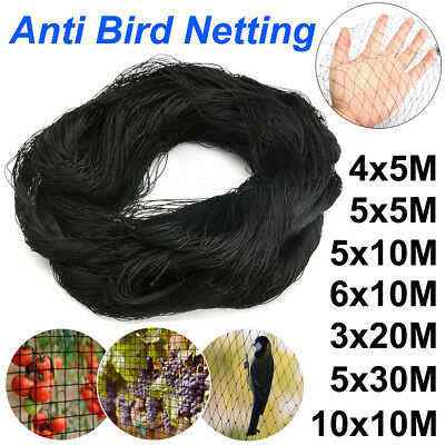 7 Sizes Black Anti Bird Net Netting Protection Plants Veg Crops Fruit Garden New