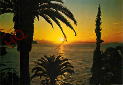 Picture Postcard- Madeira, Funchal, Sunrise