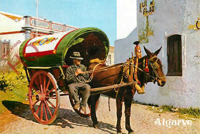 Picture Postcard:;Albufeira, Typical Cart, Algarve