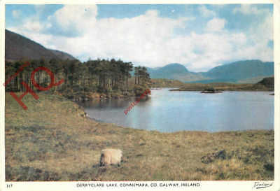 Picture Postcard:;Connemara, Derryclare Lake