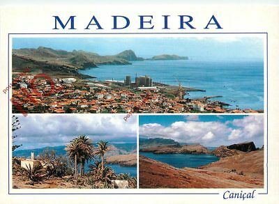 Picture Postcard-:Madeira, Canical