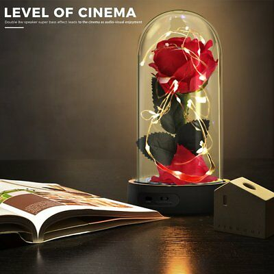 Beauty And The Beast Enchanted Rose Glass Dome LED Wedding Valentines Day Gift