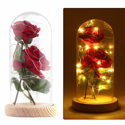 Red Rose Beauty & the Beast LED Glass Dome Enchanted Mothers Day Valentines Gift