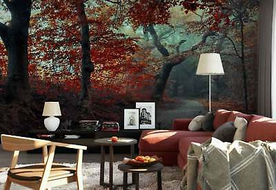 Red Forest Foliage Road Mist Photo Wallpaper Wall Mural (1X-1342158)