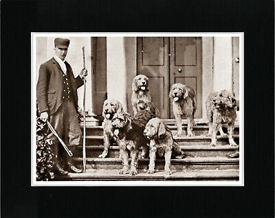 Otterhound Dogs And Huntmaster Great Vintage Style Dog Print Ready Matted