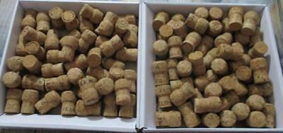 Bulk lot of 100 used corks - all Champagne Excellent Cond't - Free Post