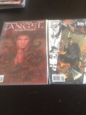 Angel After The Fall Issue 1 . Two Different Variants