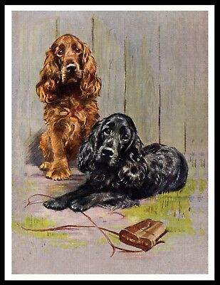 Cocker Spaniel Dogs Guard Masters Binoculars Vintage Style Dog Art Print Poster