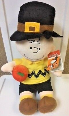 Peanuts Charlie Brown Thanksgiving Plush Light Up Plays Tune  NEW! Hand To Find!
