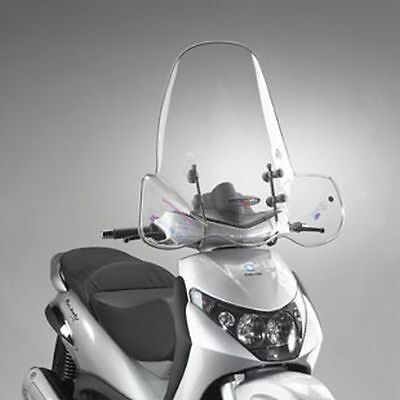 Parabrezza Paravento Windshield Windscreen Beverly 125 250 Dal 2004 Biondi