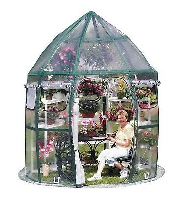 New Greenhouse Kit 8' x 8' Pop Up Portable Conservatory PVC