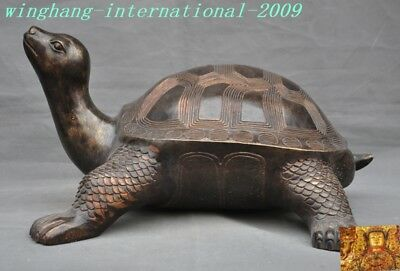 Old Chinese fengshui bronze lucky auspicious Longevity Turtle Tortoise statue
