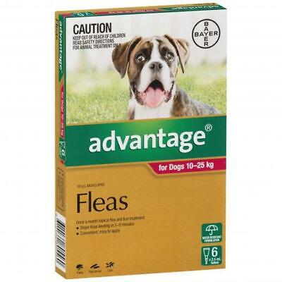 NEW Advantage - Flea Treatment for Dogs 10kg - 25kg