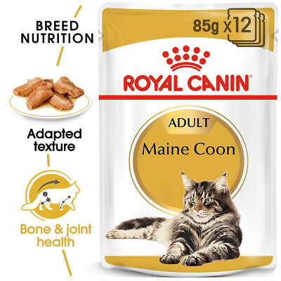 NEW Royal Canin Adult Maine Coon Wet Cat Food in Gravy - 85g