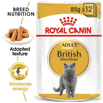 NEW Royal Canin Adult British Shorthair in Gravy - 85g
