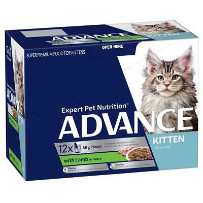 NEW ADVANCE Kitten 2-12 Months with Lamb in Gravy