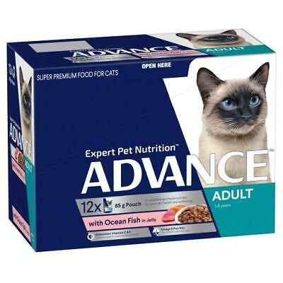 NEW ADVANCE 1+ Years Adult Cat with Ocean Fish in Jelly