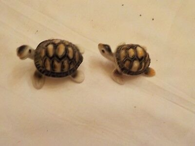 Two  Small Turtles Porcelain Or Ceramic