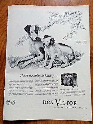 1945 RCA Victor Radio Phonograph Ad Something in Heredity Puppy Dog Theme
