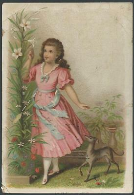 Victorian Trade Card for Bush and Co's., Pure White Soaps with Lovely Girl