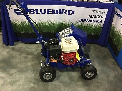 New Bluebird BB650 Bed Bug Landscape Edger Honda Cable Layer Garden Yard Edging