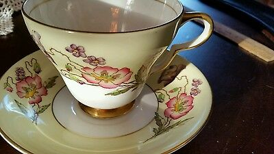 Taylor & Kent England Fine Bone China Hand Painted Cup & Saucer
