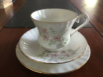 Queensway Trio Pattened  English Bone China