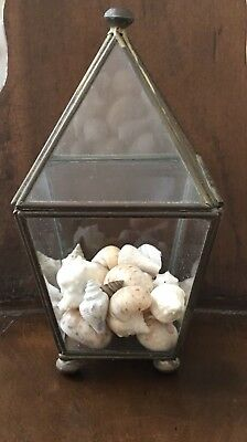 Vintage Brass and Glass Footed Pyramid Curio Display Case w/Seashells Sea Shells