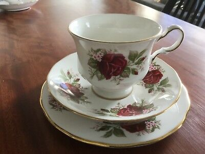 QUEEN ANNE TRIO PATTERN no 8839 ENGLISH BONE CHINA