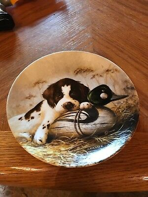 Knowles China, 'Dog Tired-The Springer Spaniel', 1st in the Field Puppies Plate