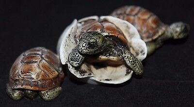CUTE TRIO of Turtle Babies Figurine, Castagna of Italy 1989, SIGNED, Excellent!