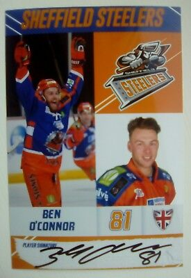 Auto'd BEN O'CONNOR 2017-18 Sheffield Steelers team issued photo