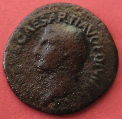 Drusus Copper As